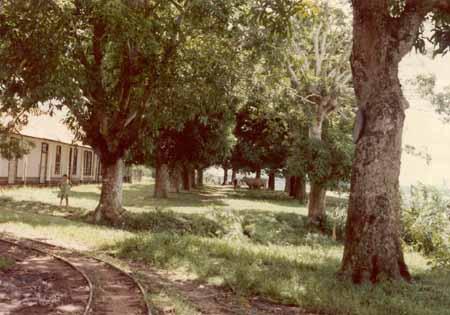El Mangal de seiler foto tomada por Chonfi Chávez en Febrero de 1981