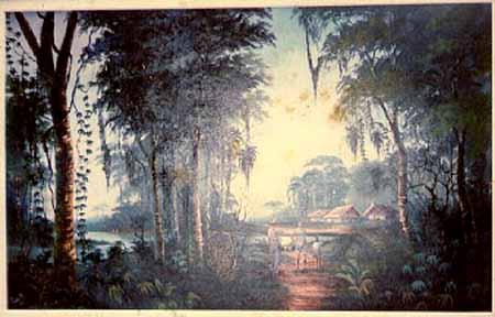 selva y pahuichis WN