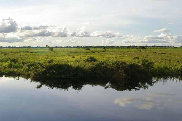 800px-Llanos_del_Beni2C_Bolivia[1] 640